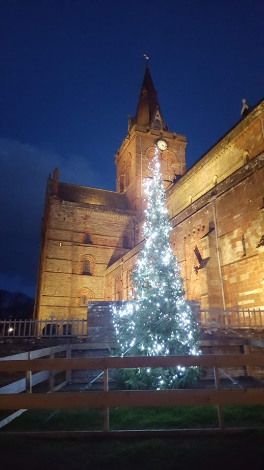 tall thin pine tree covered in blue lights stands on a night infront of St Magnus Cathedral