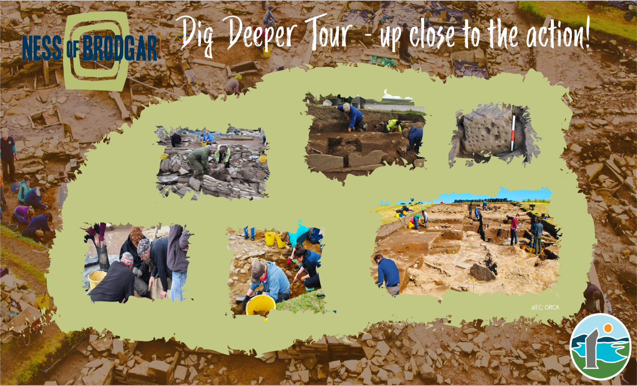 the ness of brodgar dig deeper tour allows you to get close to the action and view the digging