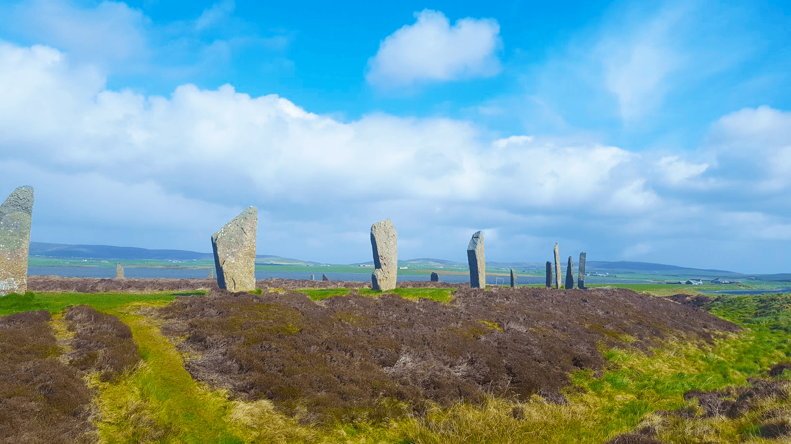 fluffy clouds hang above the standing stones of the ring of brodgar. below heather grows. the loch of stenness can be seen in the distance.